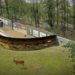 Wildobservatieplaats Hoog Buurlo